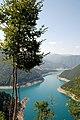 Река Пива - panoramio (1).jpg