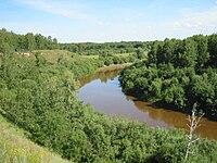 Река Тара, Новосибирская область (2005).jpg