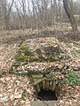 Розрушене склепіння на німецькому кладовищі в Березівці Житомирського району.jpg