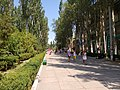 Скадовск - panoramio (1).jpg