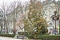 Сквер імені Шевченка у Тернополі. Фото 2.jpg
