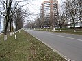 Украинка Днепровский проспект - panoramio.jpg