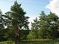 Шелаево, Валуйский район 01.jpg