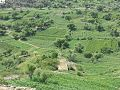 وادي الحجوف - panoramio.jpg