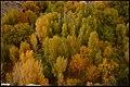 پائیز در دره آشان مراغه - panoramio (3).jpg