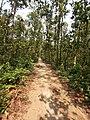 আমার সাথে দেখুন সিংড়া জাতীয় উদ্যান 10.jpg