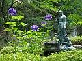 あじさいの花 Hydrangea 2013.6.13 - panoramio.jpg