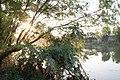 古老的漆河风景 - panoramio.jpg