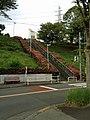 大階段とツツジ-2013 - panoramio.jpg