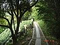 杭州.登十里郎当全程(龙井茶室-棋盘山...五云山...九溪) - panoramio (13).jpg
