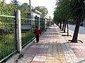 桥头·园林路 - panoramio.jpg