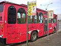 淡水遊古蹟公車 新北市 Venation 6.JPG