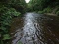 越川橋梁から下流を撮る - panoramio.jpg