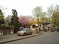 风湖公园 - panoramio.jpg