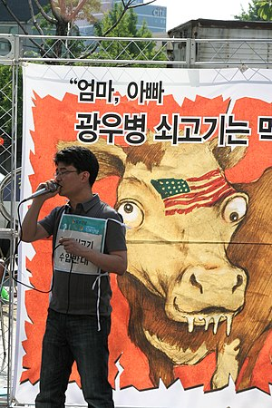 Anti-American sentiment in Korea - South Korean protested against US Beef Agreement on 11 May 2008.