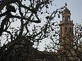 101 Campanar de Sant Salvador, des de la Rambla.jpg