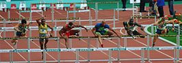 110 m horden op de Meeting Areva te Parijs in 2006
