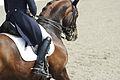 13-04-21-Horses-and-Dreams-Karin-Kosak (17 von 21).jpg