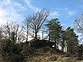 154 Formacions rocoses vora Ca n'Alou (Sant Agustí de Lluçanès).jpg