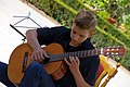 18.8.16 Guitars and Accordians in Trebon 13 (28976030182).jpg