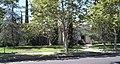 181 S Alta Vista Los Angeles.jpg