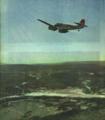 1953-01 1953年空中护林.png