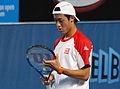 2011 Australian Open IMG 6337 (5448424746).jpg