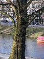 20130401 38 Utrecht.JPG