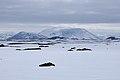 2014-04-28 14-36-47 Iceland Norðurland Eystra - Reykjahlíð.JPG