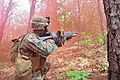 2014.6.13. 해병대 제2사단 한미해병대 보병연합전술훈련 - 13rd. June. 2014. ROK-US Marine Exercise Program(Infantry tactics) (14263063828).jpg