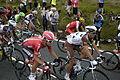 2014 Tour de France stage 2, near Littleborough (peloton)(7).JPG