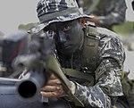 2015.9.2.해병대 1사단-상륙기습훈련 2nd Sep, 2015, ROK 1st Marine Division - amphibious warfare training (21143991371).jpg