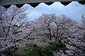 20160403 Himeji-Castle 3465 (26221572713).jpg