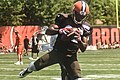 2016 Cleveland Browns Training Camp (28074690414).jpg
