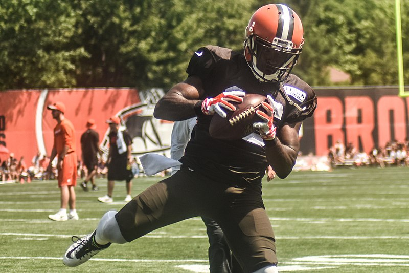 File:2016 Cleveland Browns Training Camp (28074690414).jpg
