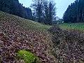 20201211 FND Quellmoor bei Näglstall1 Pleisk.jpg