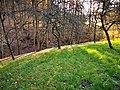2021-04-23 Radtour bei Brunntal (Werbach) 8.jpg