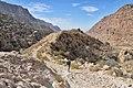 21 Dana Feynan Trail - In the Valley - panoramio.jpg