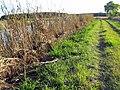 37 Bennetts Point RD Green Pond SC 6865 (12397859553).jpg