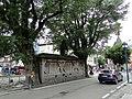 39046 Ortisei BZ, Italy - panoramio (5).jpg
