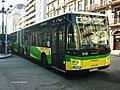 6155 Ado - Flickr - antoniovera1.jpg