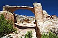A070, Colorado National Monument, Colorado, USA, Rattlesnake Canyon arch, 2002.jpg