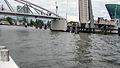 AMSTERDAM BRIDGES-Dr. Murali Mohan Gurram (15).jpg