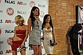 AVN Awards 2011 DSC 0109 (5348623266).jpg