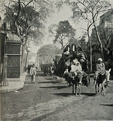 A Bedawin Tribe on the March Through Cairo. (1911) - TIMEA.jpg