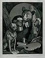 A leering bear with soiled clerical bands, a pot of beer and Wellcome V0049299.jpg