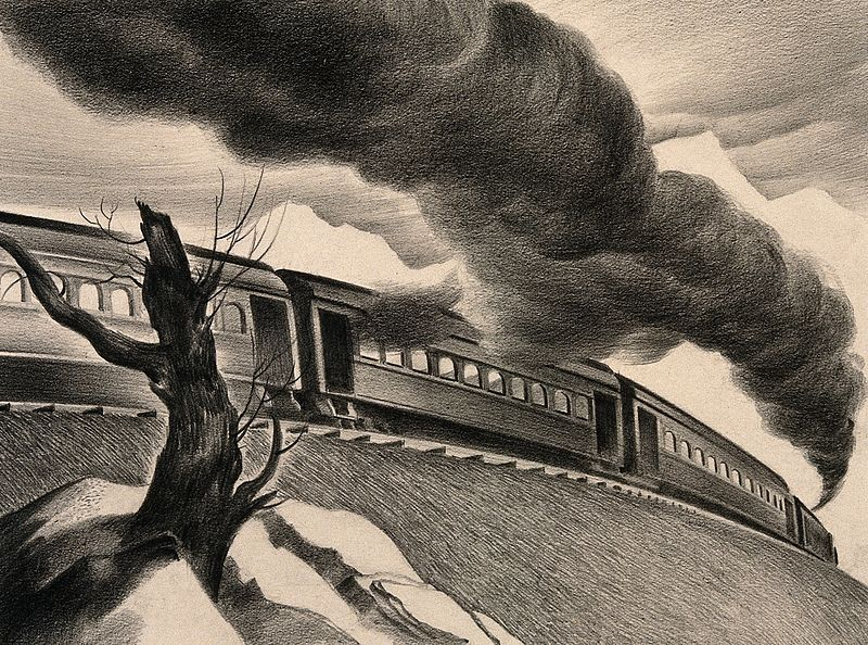 File:A steam train transporting its passengers and plague to its Wellcome V0010674.jpg