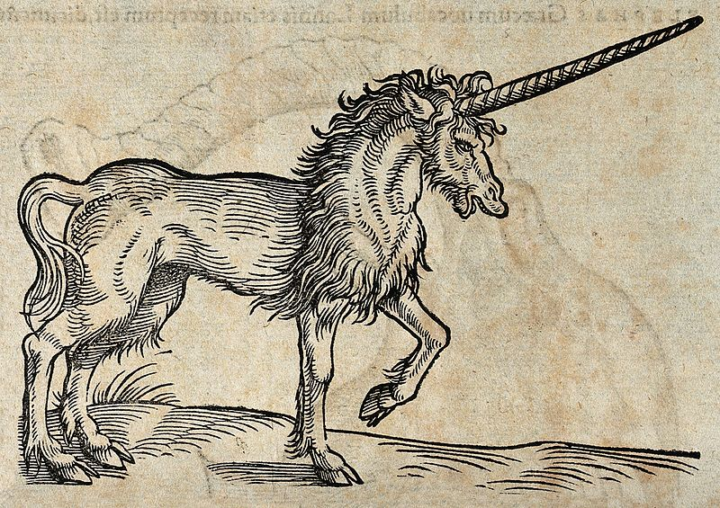 A unicorn. Woodcut after C. Gessner. Wellcome V0021193.jpg