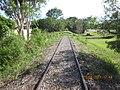 Abandoned Railway Darwin - panoramio (8).jpg