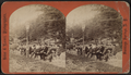Afternoon in Congress Park, from Robert N. Dennis collection of stereoscopic views 5.png